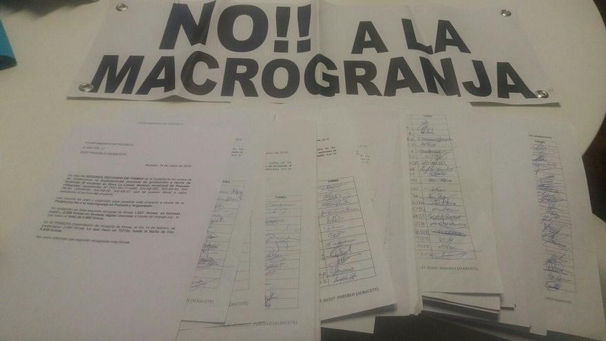 Firmas recogidas hasta ahora, cerca de 7000. FOTO: Plataforma No a la Macrogranja de Pozuelo y Argamasón
