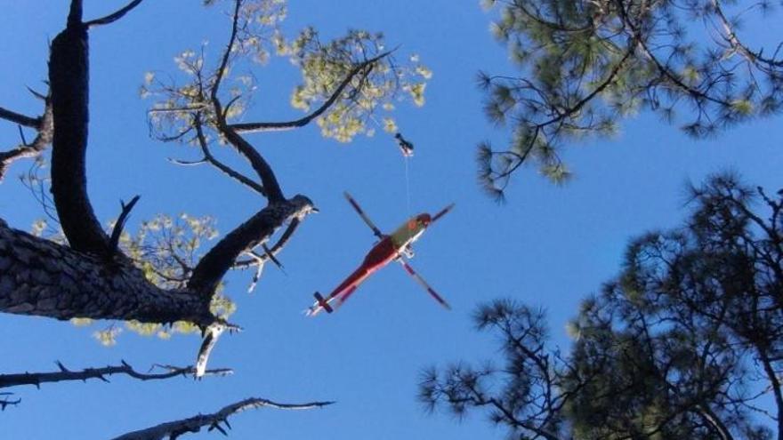 El helicóptero del Grupo de Emergencia y Salvamento (GES) localizó a la afectada y procedió a su rescate con la colaboración de Bomberos La Palma y del personal del Medio Ambiente y del Parque Nacional.
