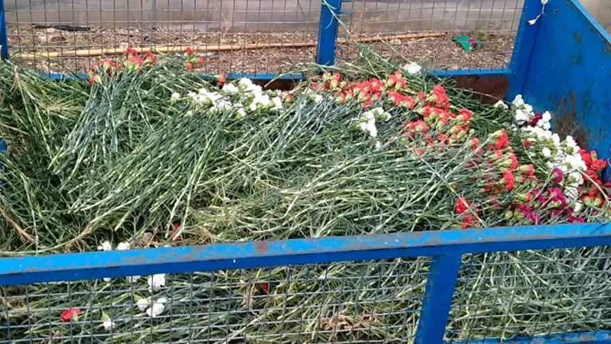 El sector de la floricultura está completamente paralizado