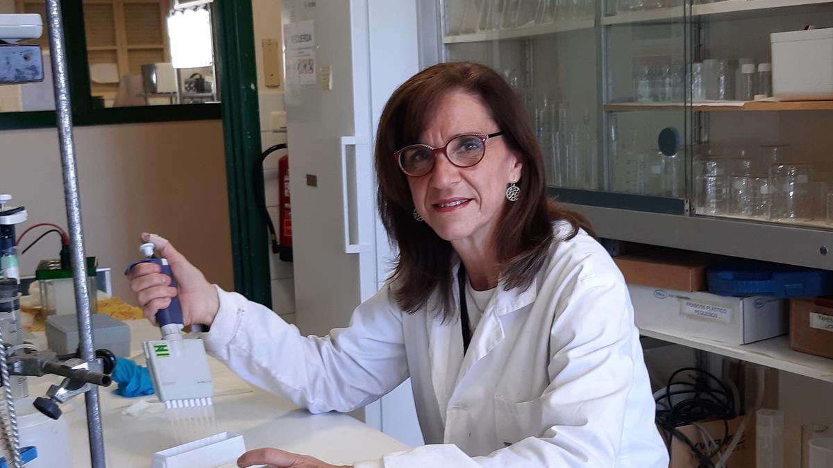 Mª Dolores Pérez Cabrejas, catedrática de Tecnología de los Alimentos de la Facultad de Veterinaria de la Universidad de Zaragoza