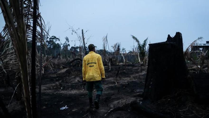 La difícil misión de combatir el fuego en las entrañas de la selva amazónica