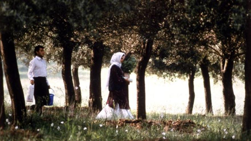 Fotograma de 'A través de los olivos', de Abbas Kiarostami.