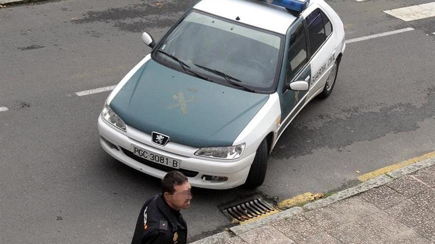 Detenido por robar 50 palomos en Altea (Alicante), valorados en 20.000 euros
