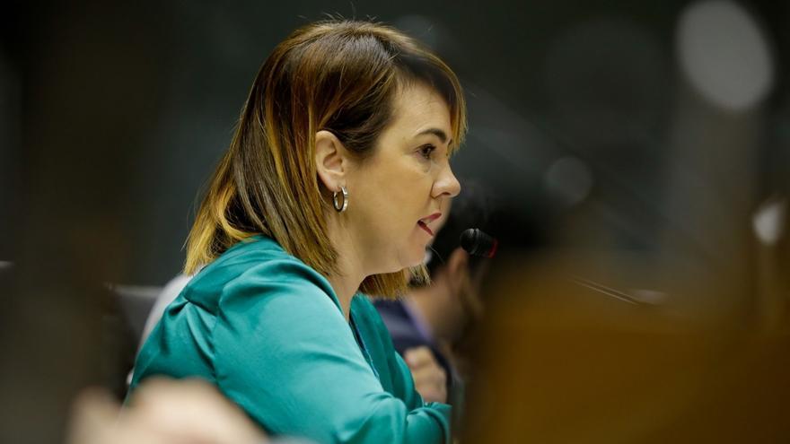 """El PSN presenta una queja por el """"comportamiento"""" de la presidenta de la Cámara con un parlamentario socialista"""