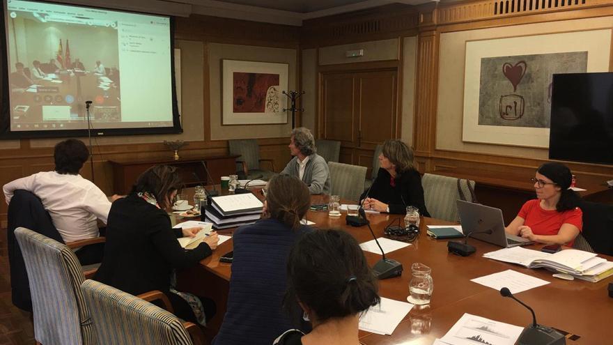 Reunión telemática entre la Comunidad de Madrid y el Ministerio de Sanidad, la tarde de este jueves.