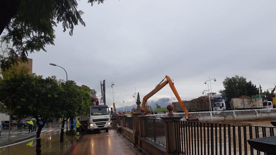 Una excavadora recoge las cañas apiladas bajo el puente de la Fica en Murcia capital / E.R.