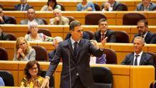 El PP utilizará su rodillo en el Senado para forzar a Sánchez a dar explicaciones sobre su tesis en un pleno monográfico