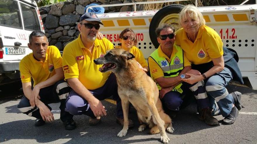 Cool junto a los miembros de la Unidad Canina de Rescate de AEA. Foto: LUZ RODRÍGUEZ.