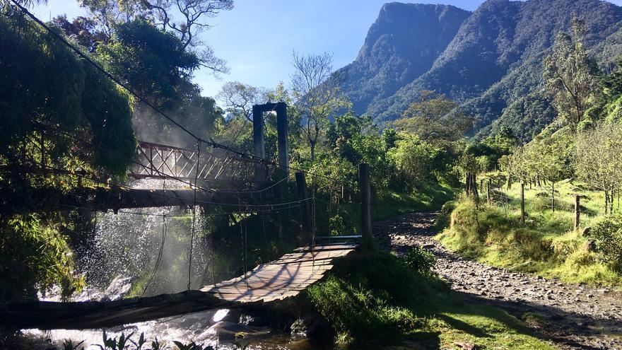 El valle de Cocora es uno de los iconos turísticos colombianos. Daniel