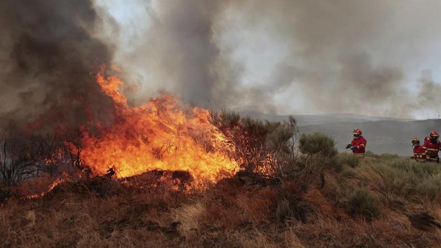 Fuegos han arrasado 213.986 hectáreas en Portugal, el peor dato en una década