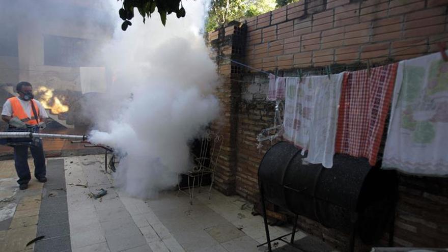 Suman 16 muertes por dengue en Paraguay y sigue la batalla contra el mosquito
