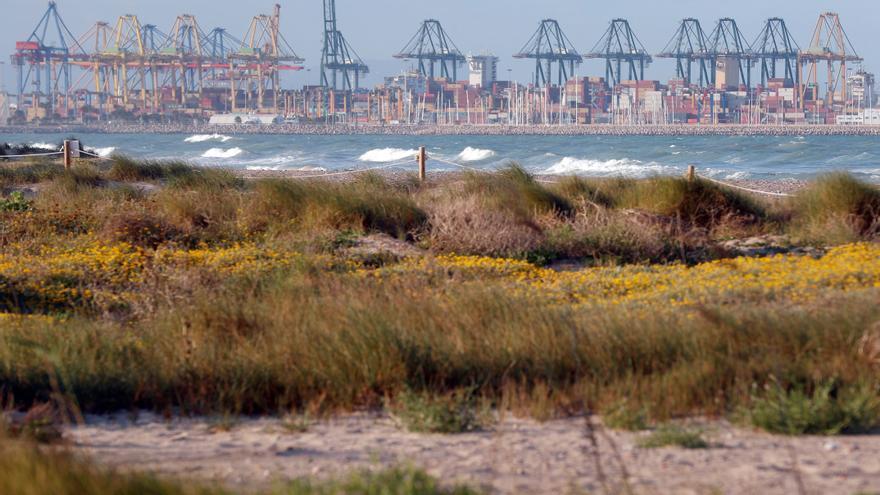 El Puerto de Valencia pone en cuarentena a dos buques con 10 contagios por covid