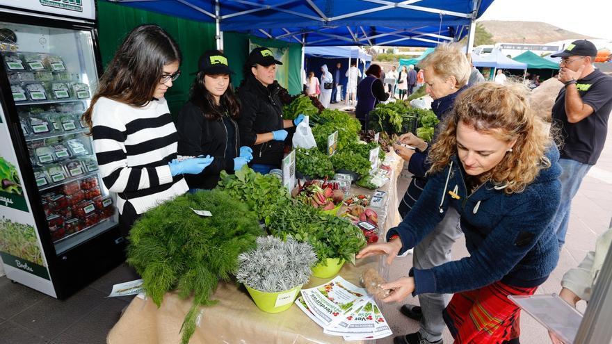 Las verduras y las hierbas aromáticas de Teguise sorprenden y cautivan a los visitantes del Mercadillo