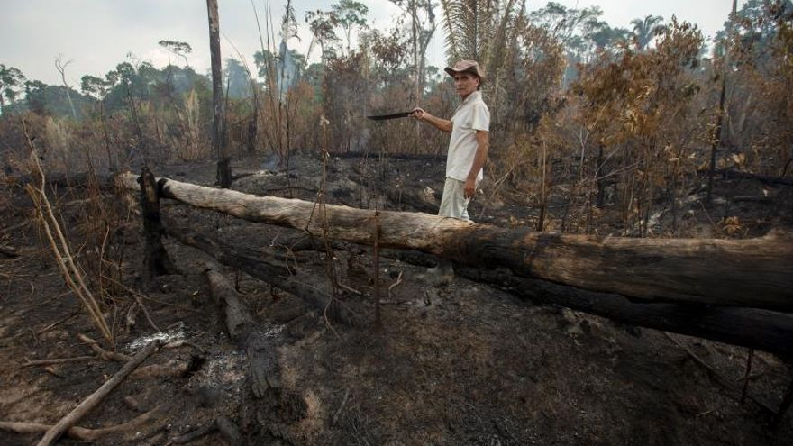 Ganaderos apuntan a la mano criminal en los incendios de la Amazonía