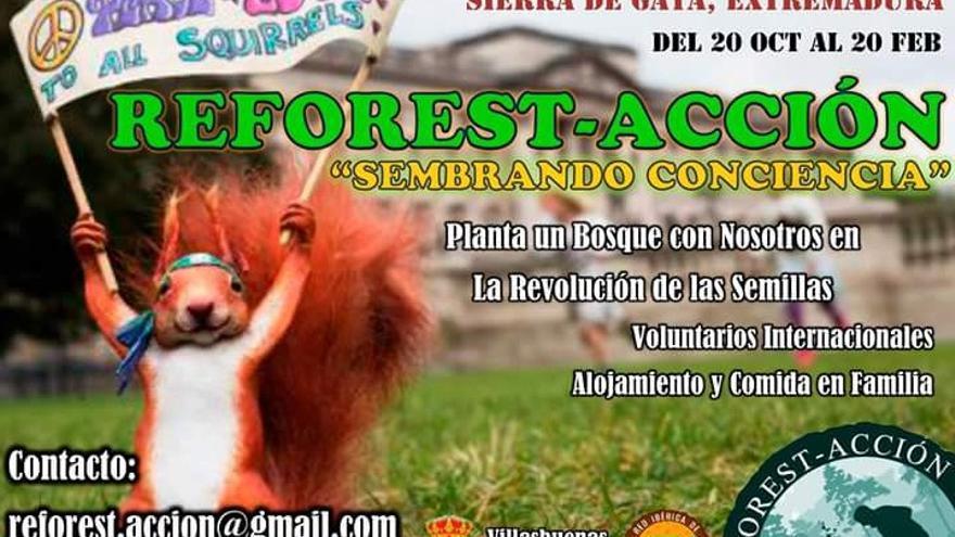 Cartel de la nueva campaña 'Reforest-acción'