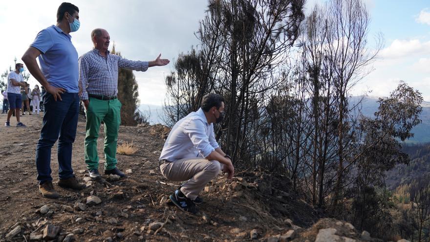 La Junta de Andalucía impulsará un programa de recuperación ambiental y de desarrollo para Sierra Bermeja