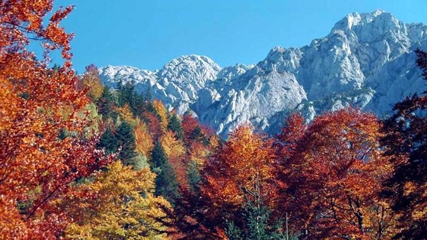 La CE y el BEI otorgan 6 millones de euros para negocios que protegen la naturaleza