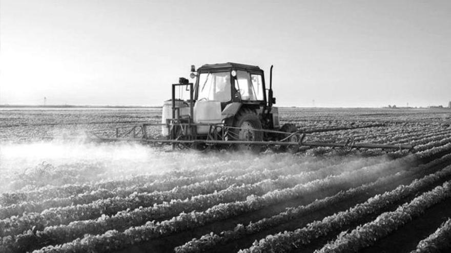 Pergamino: una fundación que hace donaciones por el Covid-19, sus vínculos con el poder y el agronegocio