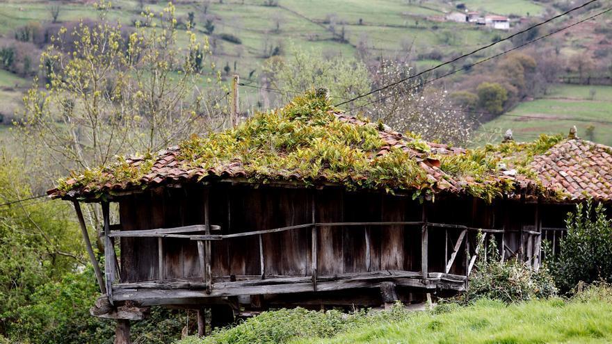 Vista de un pueblo en la zona rural asturiana
