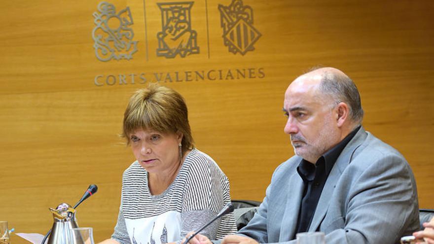 Empar Marco, directora general de Àpunt, comparece en las Corts