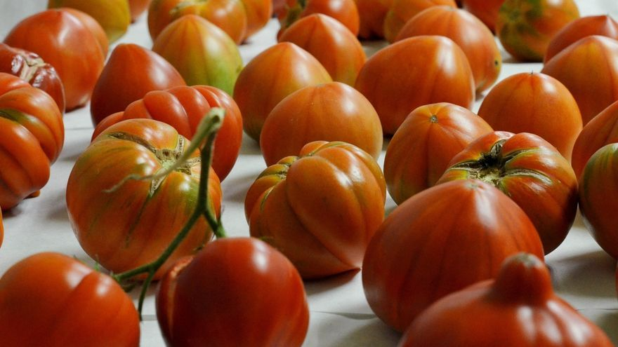 Cantabria subvencionará la compra de productos agroalimentarios perecederos para donarlos