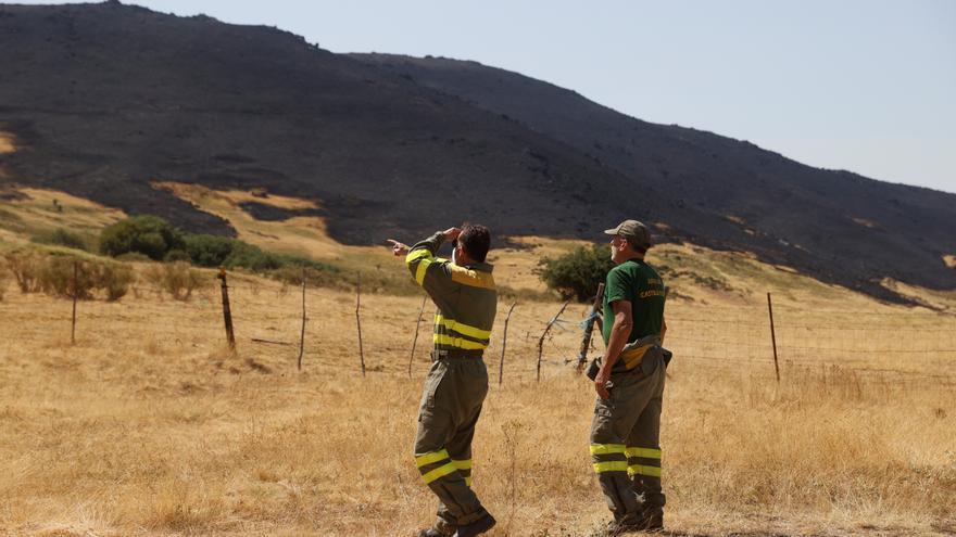 Un juzgado de Ávila abre diligencias por el incendio de Navalacruz