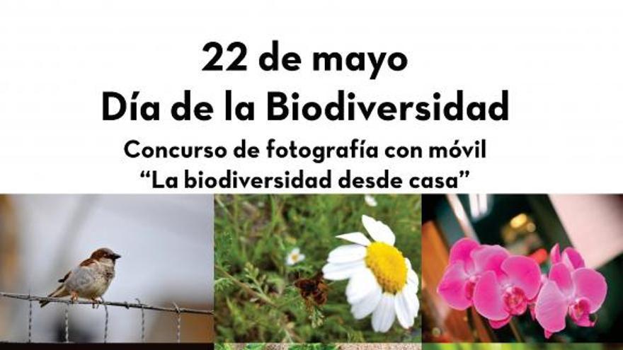 concurso de biodiversidad