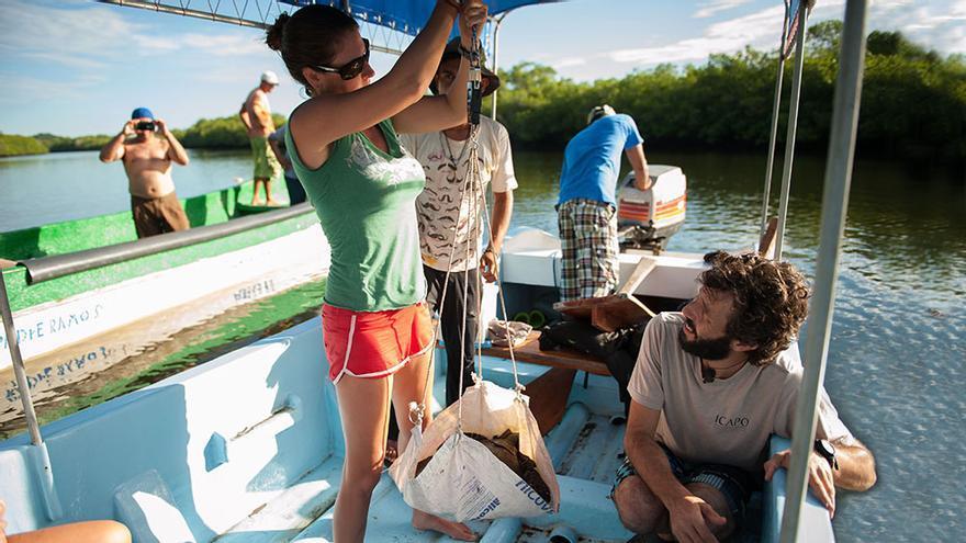 Sos Nicaragua, conservación de tortugas en Nicaragua