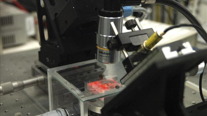 Desarrollan una nanomemoria capaz de almacenar datos como un cerebro humano