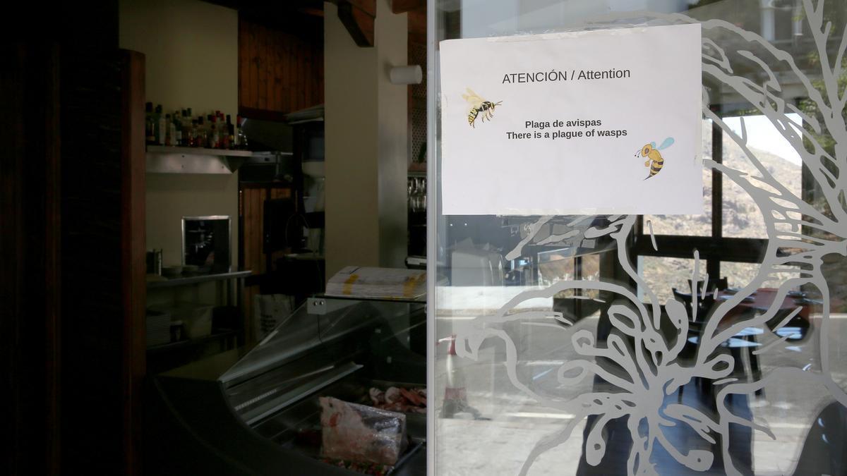 Cartel previniendo de las avispas en el restaurante El Almendro, en Tejeda (Gran Canaria).