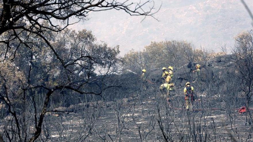 2017 se convierte en el tercer peor año en incendios forestales de la década