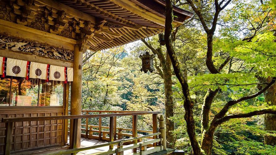 Templo sintoísta en bosque (Japón). | REVISTA AMBERES