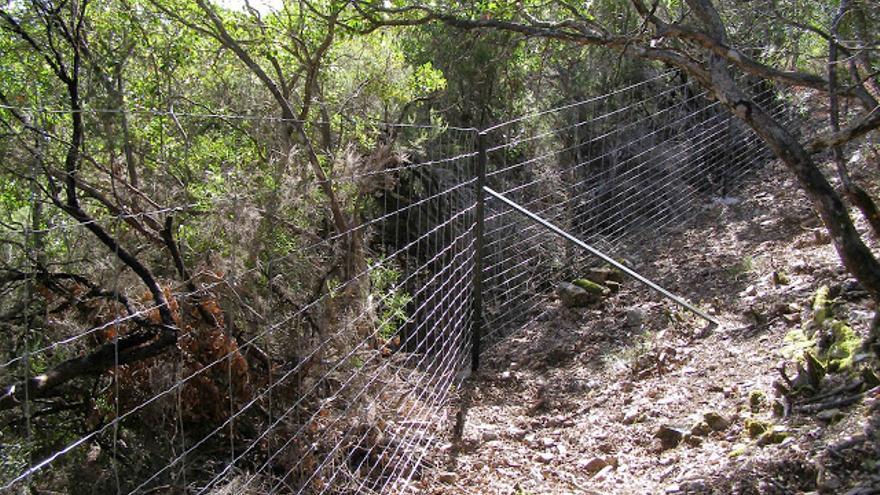 Cerramiento ilegal, finca 'Valleleor', Parque Nacional de Cabañeros / Foto: Ecologistas en Accion