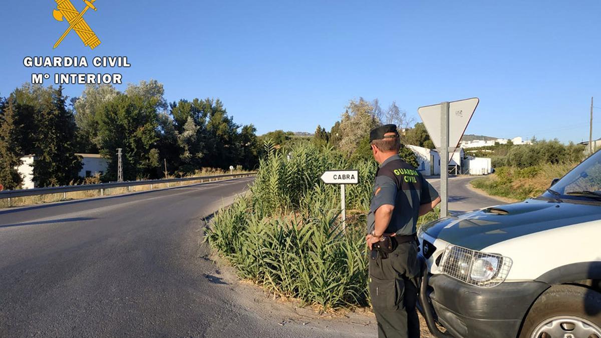Un agente de la Guardia Civil en Cabra.