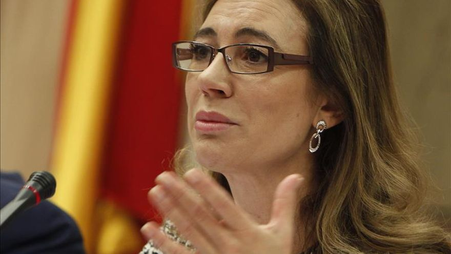 """Fernández Currás defiende un presupuesto """"continuista"""" y más reformas en 2015"""