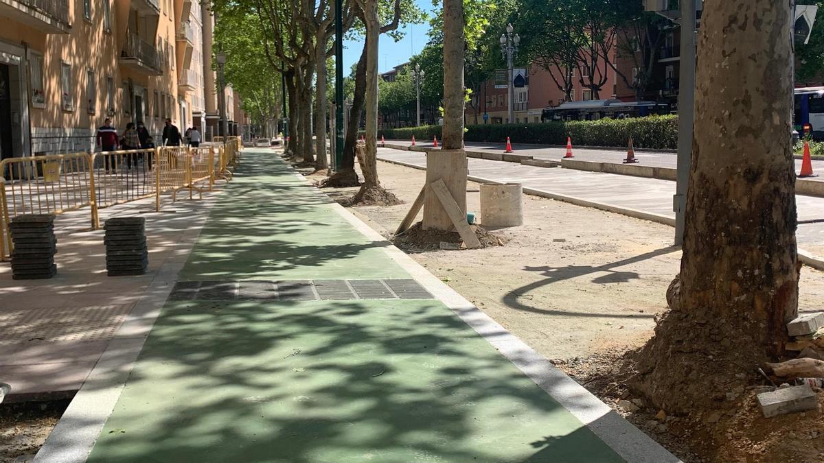 Nuevo carril bici en el paseo de Zorrilla de Valladolid.