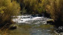 """La """"singularidad"""" de los ríos Duero y Júcar, ¿bien ambiental en peligro de extinción?"""