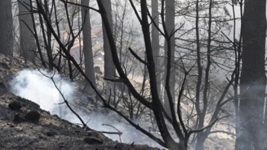 Consecuencias del incendio de La Gomera. (GOMERANOTICIAS.COM)