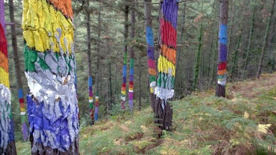 Imagen de los pinos originales pintados por Ibarrola