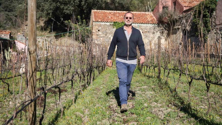 Enrique Ruiz camina entre los viñedos.