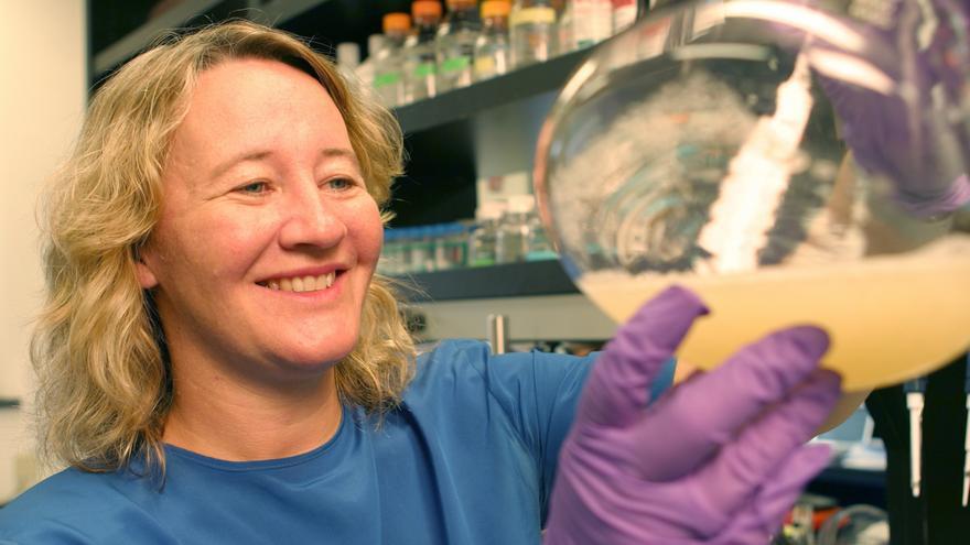 Carol Greider, la bioquímica estadounidense ganadora del Nobel de Medicina en 2009