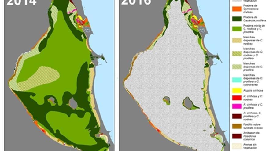 El Mar Menor en 2014 y 2016 / IEO