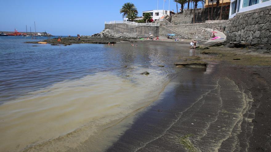 Microalgas en Arguineguín