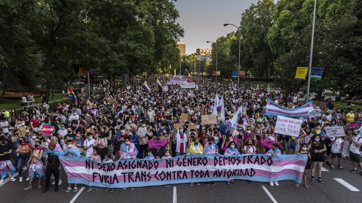 """Cabecera de la manifestación del Orgullo Crítico en Madrid, demostrando la """"furia trans"""""""