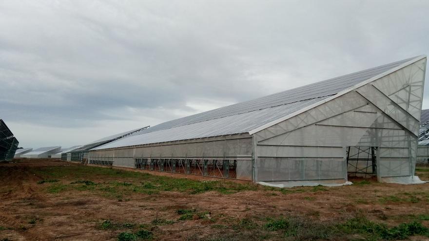 Uno de los invernaderos solares de Francia