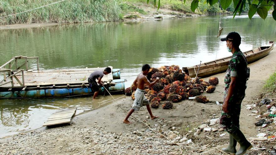 Dos trabajadores descargan frutos de la palma aceitera bajo la mirada de un guarda forestal en North Sumatra, Indonesia. / Laura Villadiego