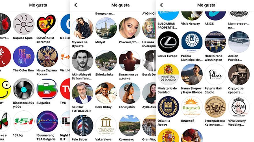 Lista de páginas a las que había dado 'me gusta' uno de los perfiles de la red que sí había tenido actividad.