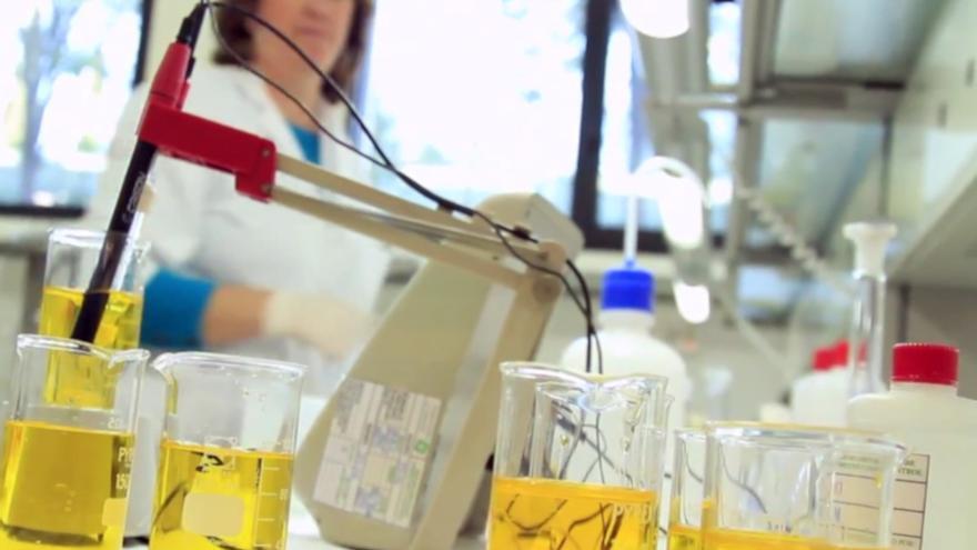 Laboratorio de investigación. JUNTA DE ANDALUCÍA