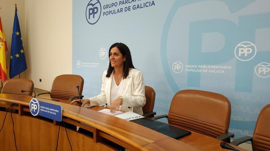 """PP gallego descarta un proyecto como 'Galicia Suma': """"El PPdeG es el único representante del centro derecha en Galicia"""