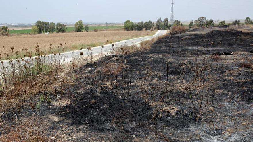 Las cometas incendiarias de Gaza, una amenaza para los agricultores israelíes